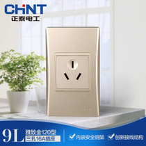 CHiNT Electric 120 NEW9L safety steel frame wall switch socket Golden three hole socket