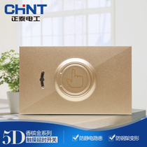 (CHiNT)CHiNT 118 wall switch socket NEW5D steel frame Champagne Gold touch delay switch