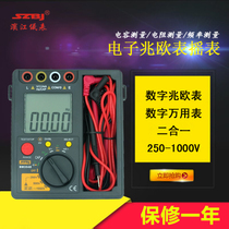 Riverside BM3548 insulation resistance Tester multimeter digital 1000V electronic megohmmeter shake table