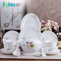 Jialan bird flower 28 56 home with porcelain tableware set Creative Kitchen bone china dishes combination