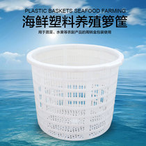 Thick plastic large white Round Basket Fruit and vegetable basket seafood watermelon basket turnover box basket