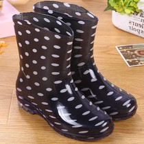 Fashion waterproof shoes female cute lady garden personality Korean simple vegetables water shoes women laundry shoe cover