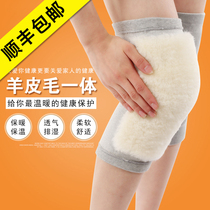 Knee protection jacket waist warm old cold legs autumn and winter elderly air conditioning wool plus cashmere cold protection knee