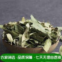 Da Yihong hand selected apocynum 500 grams