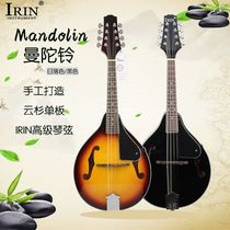 Mandolin Bell plucked musical instrument mandolin sunset color black beginner