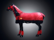 Offer horse coat with horse jacket (without leggings) fee large winter