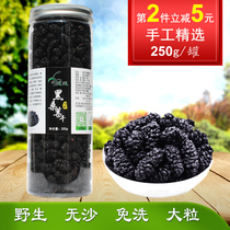 Turpan farm black mulberry dry fresh wild disposable non-grade Tongren soaked 250g * 2 canned 500g