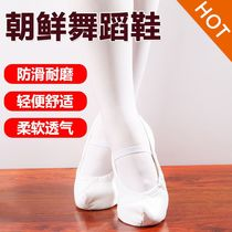 Korean Dance Family Dance hook shoes indoor female family wind training dance shoes flat dance shoes