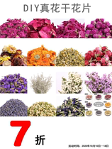 DIY real flower dried flower slices Petal lavender roses dont forget my peony colorful chrysanthemum bath foot bath.