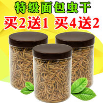 Breadworm dry yellow powder editing hamster food supplies bear snack hedgehog fish bird turtle main grain freshwater small fish dry shrimp dry