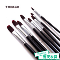 Tianlang duck tongue brush nylon hair round peak brush gouache oil painting acrylic paintbrush single optional