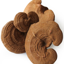 Baofeng source of Ganoderma lucidum Changbai Mountain semi-wild shank whole branch of Ganoderma lucidum free slice 500g