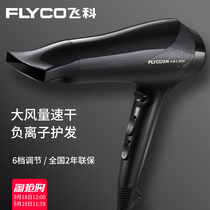 Feike hair dryer home hair stylist dedicated high-power negative ion hair dormitory students mute hair tube