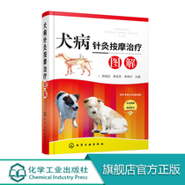 Canine Acupuncture Massage Treatment Illustration In veterinary acupuncture massage knowledge Acupuncture massage treatment dog common disease knowledge Canine disease acupuncture massage treatment clinical technology Scientific pet breeding sweep code to watch the video.