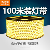 (100 m set) Edrand lamp with LED living room ceiling home decorative lamp strip 220v light with line lamp