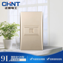 CHINT electrician 120 type NEW9L safety armature steel wall switch socket Golden telephone socket