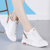 Within the increased Daddy shoes female ins net red shoes 2019 new tide shoes Super fire autumn leather rainbow white shoes