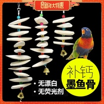 Cuttlefish Bone Xuan Feng Tiger leather peony parrot calcium molar supplies utensils bird eating squirrel tortoise hanging string gnawing toys