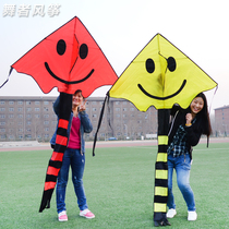 Small laughing face kite couple kite kite single line easy to fly triangle kite