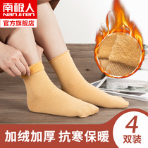 Antarctic socks female tube socks autumn and winter plus velvet thickened meat snow socks bare legs exposed ankle artifact LY