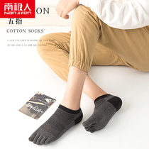 Antarctic men's anti-foot short tube four seasons sports cotton socks spring and summer shallow mouth sweat five toe boat socks toe socks