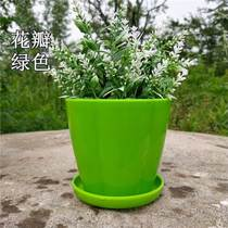 Flower pot ceramic special home large large storage tray plastic green meat Chlorophytum meat small flower pot