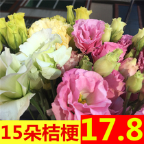 Yang Bell flower bouquet wholesale Yunnan Kunming base straight household water lily straight batch of the same city express
