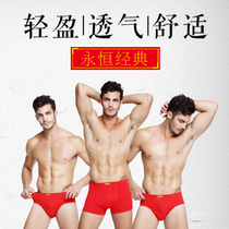 Men's boxer briefs men's all-cotton stretch cotton men's underwear red underwear men's briefs