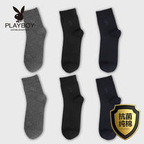Playboy socks men's long tube summer cotton antibacterial deodorant sweat cotton comfortable business men's socks tide