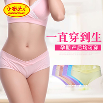 Pregnant womens underwear early pregnancy 2-6 months low waist cotton 4-7 women early and late mid-cotton pants