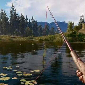 黑坑钓鱼打窝很重要